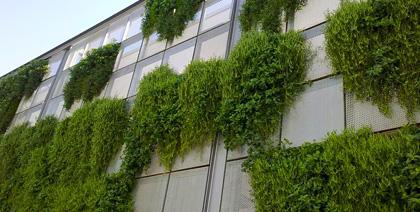 Jardín vertical Splau